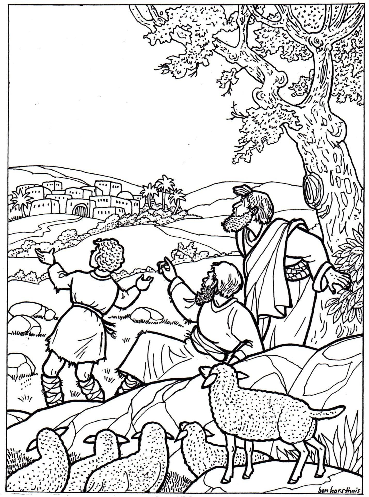 kleurplaat herders 3 11 jaar bijbels opvoeden nl