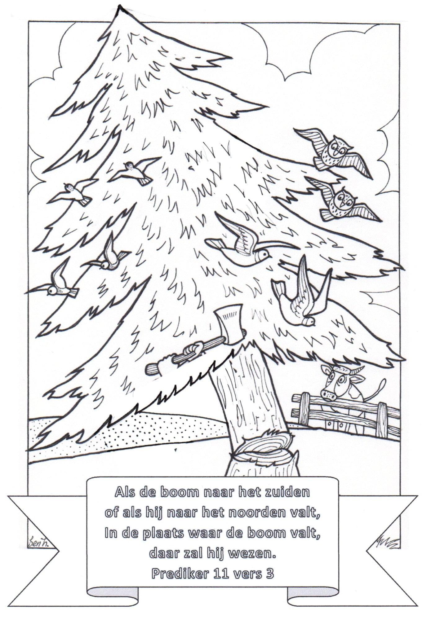 kleurplaat herfstboom 3 10 jr bijbels opvoeden nl